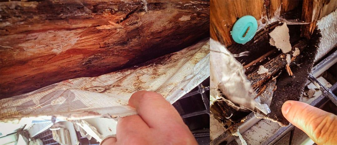Damage inside the walls of Silverton Condos