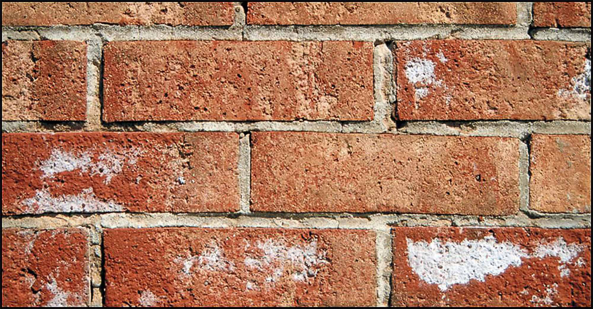 Brick Efflorescence Effective Removal And Prevention Tips Prosoco